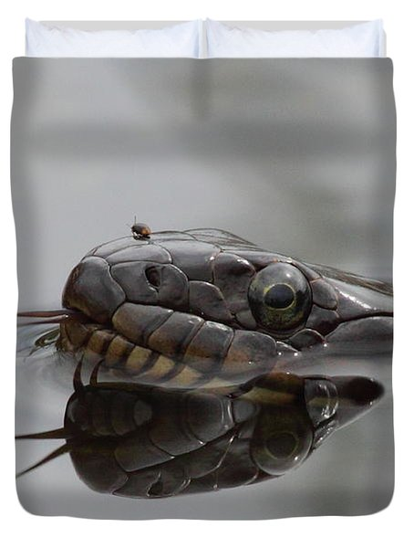 Water Snake And Hitchhiker Duvet Cover by Bruce J Robinson
