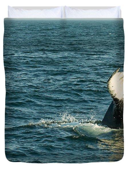 Whale Duvet Cover by Sebastian Musial