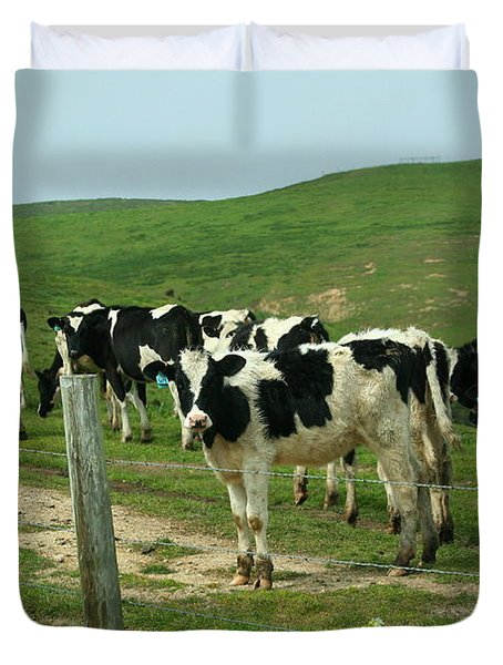 When the Cows Come Home Duvet Cover by Wingsdomain Art and Photography