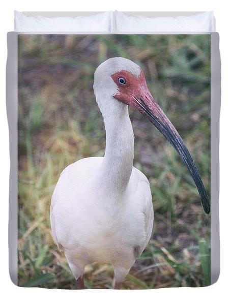 White Ibis In The Morning Light  Duvet Cover by Saija  Lehtonen