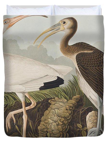 White Ibis Duvet Cover by John James Audubon