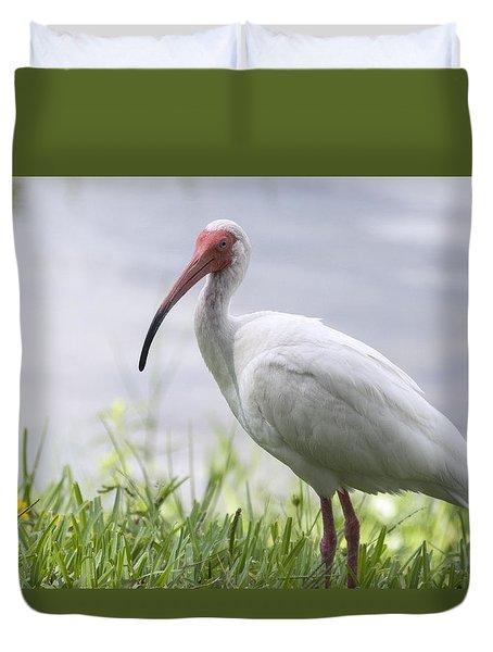 White Ibis  Duvet Cover by Saija  Lehtonen