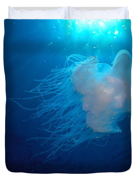 White Jellyfish Duvet Cover by Dave Fleetham - Printscapes