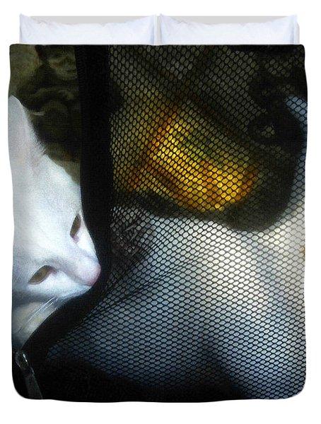 White Kitten Duvet Cover by David Lee Thompson