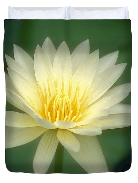 White Lily Duvet Cover by Ron Dahlquist - Printscapes