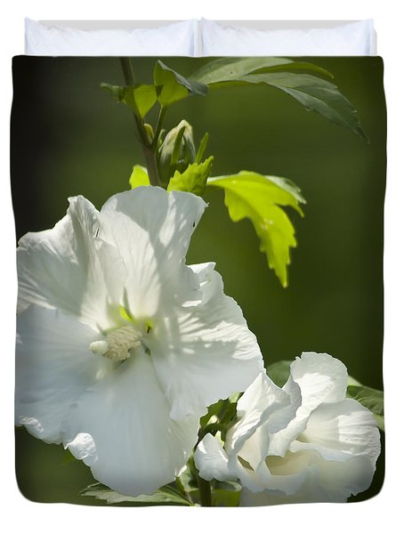 White Rose of Sharon Squared Duvet Cover by Teresa Mucha
