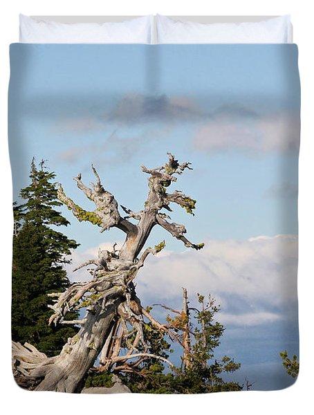 Whitebark Pine at Crater Lake's rim - Oregon Duvet Cover by Christine Till