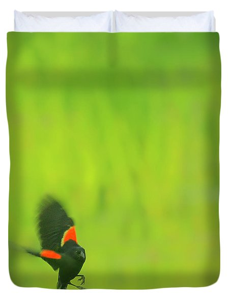 Who are you looking at Duvet Cover by Aimelle