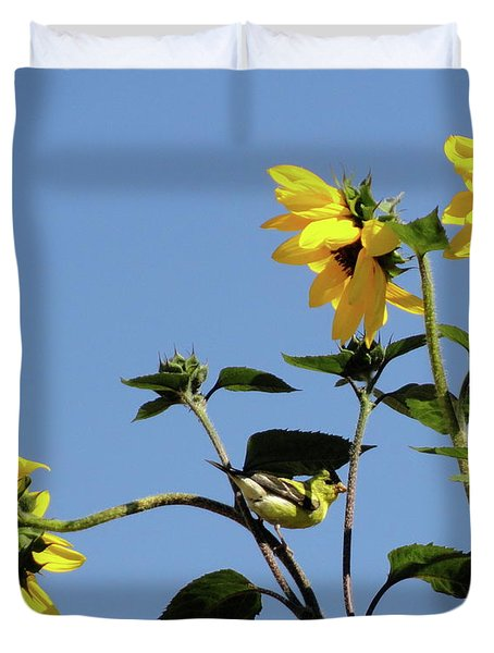 Wild Canary Sunflowers Duvet Cover by Shannon Grissom