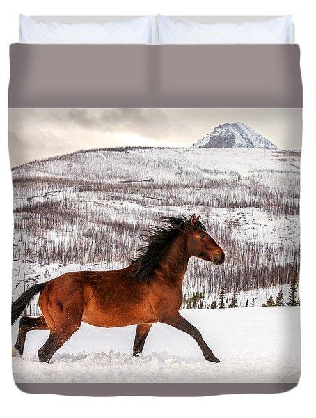 Wild Horse Duvet Cover by Todd Klassy