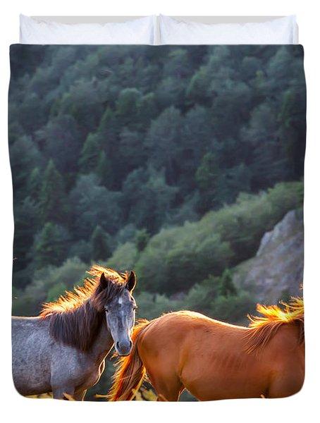 Wild Horses Duvet Cover by Evgeni Dinev