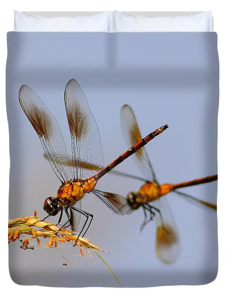 Wingman Duvet Cover by Robert Frederick