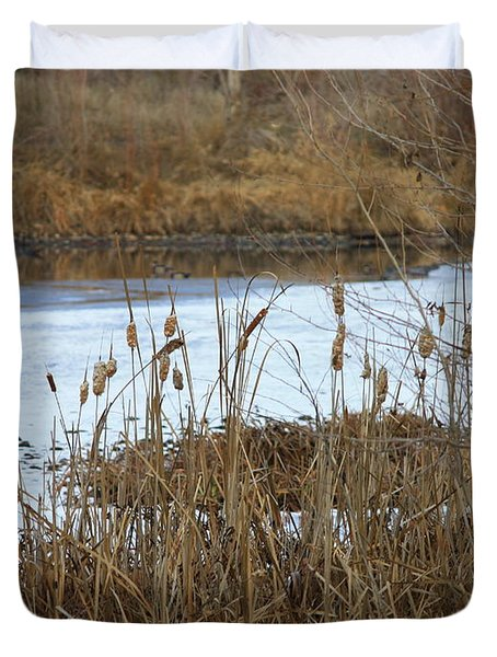 Winter Cattails  Duvet Cover by Carol Groenen