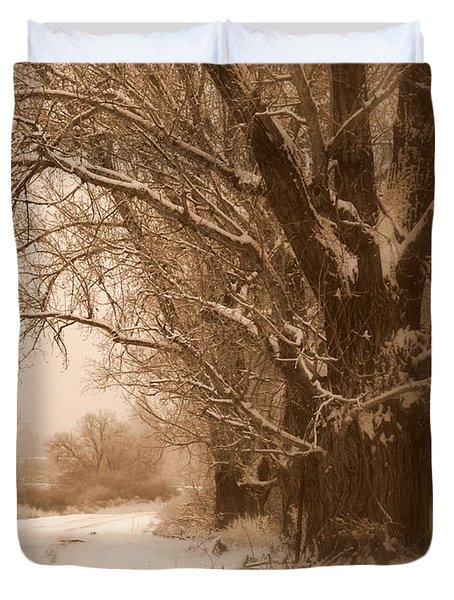 Winter Dream Duvet Cover by Carol Groenen