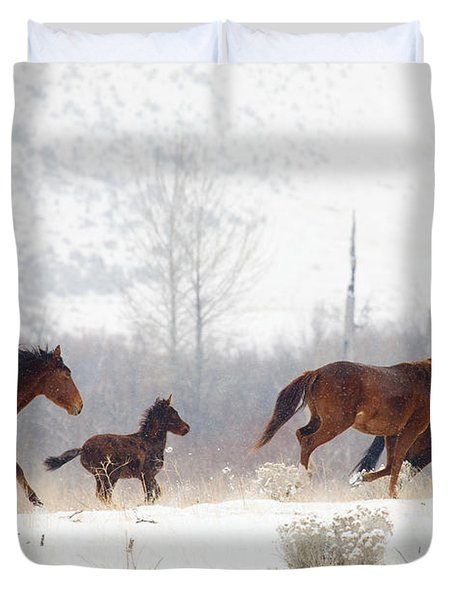 Winter Gallop Duvet Cover by Mike  Dawson