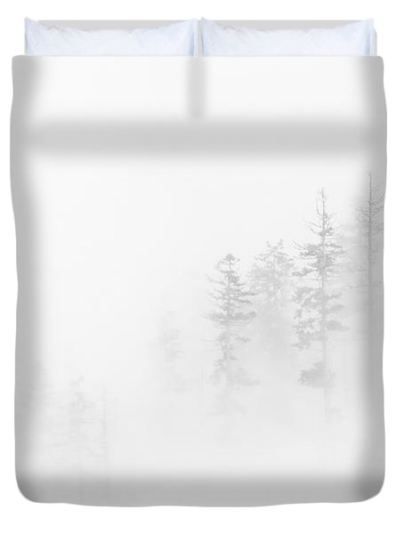 Winter Veil Duvet Cover by Mike  Dawson