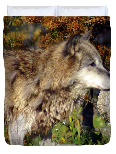 Wolf On Patorl Duvet Cover by Marty Koch