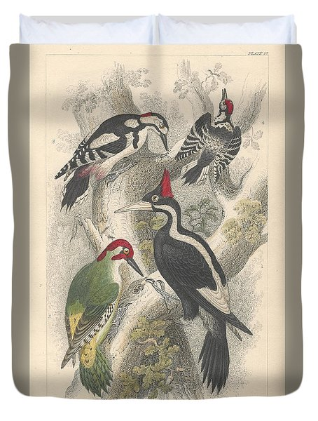 Woodpeckers Duvet Cover by Oliver Goldsmith