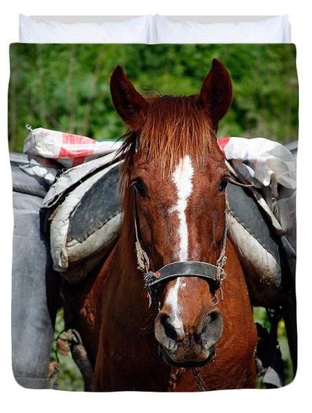 Work Horse At The Azores Duvet Cover by Gaspar Avila