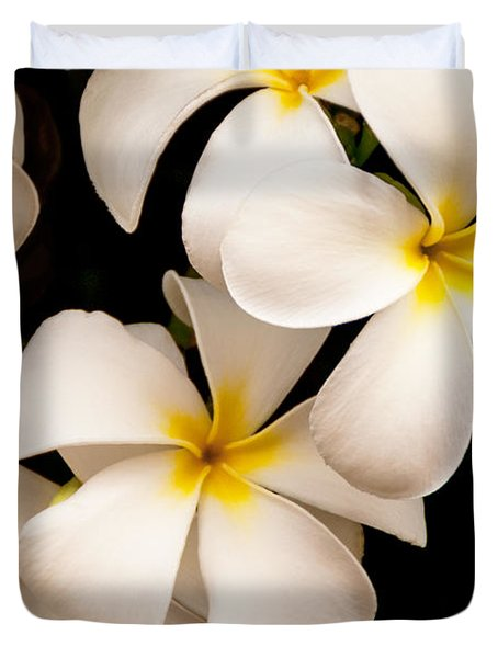 Yellow And White Plumeria Duvet Cover by Brian Harig