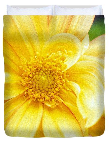 Yellow Dahlia Duvet Cover by Kathy Yates