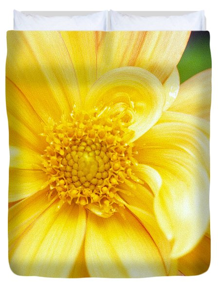 Yellow Dahlia Duvet Cover by Kathy Yates