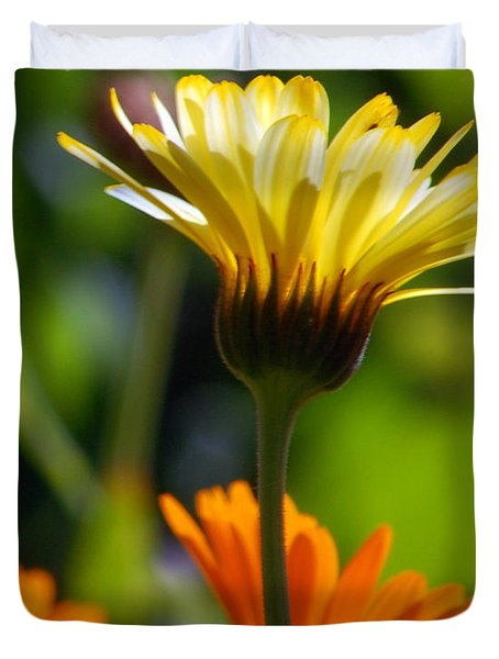 Yellow Daisy Duvet Cover by Amy Fose