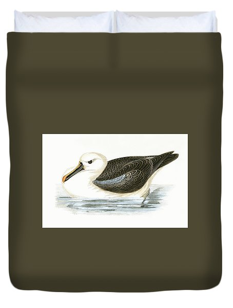Yellow Nosed Albatross Duvet Cover by English School