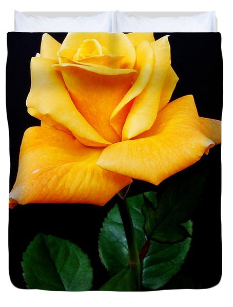 Yellow Rose Duvet Cover by Michael Peychich