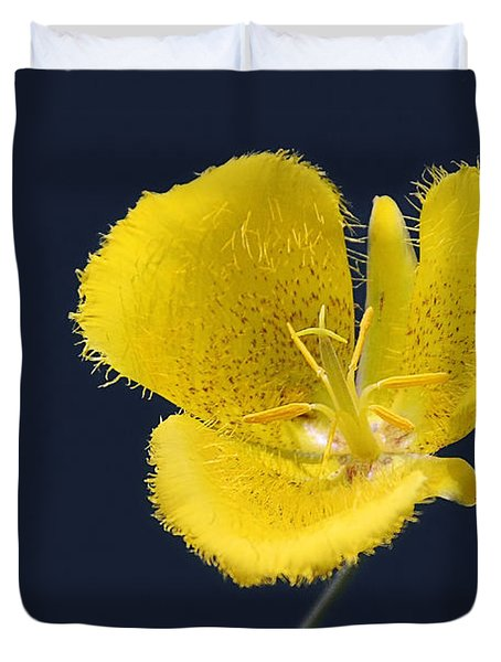 Yellow Star Tulip - Calochortus Monophyllus Duvet Cover by Christine Till