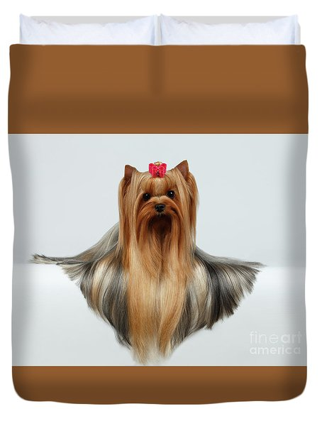 Yorkshire Terrier Dog With Long Groomed Hair Lying On White  Duvet Cover by Sergey Taran
