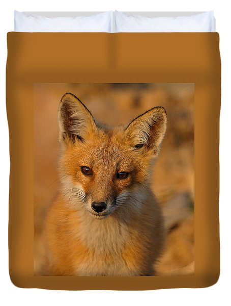 Young Fox Duvet Cover by William Jobes