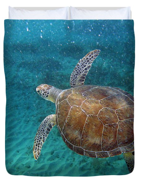 Young Green Turtle Duvet Cover by Kimberly Mohlenhoff
