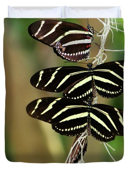 Zebra Butterflies Hanging On Duvet Cover by Sabrina L Ryan