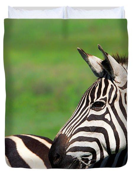 Zebra Duvet Cover by Sebastian Musial