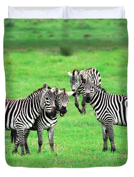 Zebras Duvet Cover by Sebastian Musial