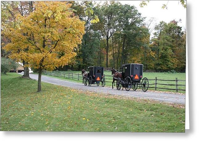Amish Community Greeting Cards -      An Autumn Amish Ride Greeting Card by R A W M