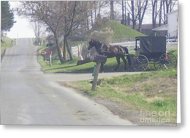 Horse And Buggy Greeting Cards -         Lets Ride Greeting Card by R A W M