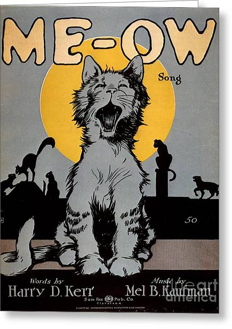 Twentieth Century Greeting Cards -  1920s Usa Cats Me-ow Meow Greeting Card by The Advertising Archives
