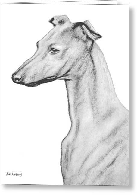 Greyhound Dog Drawings Greeting Cards - # 20 Greyhound dog Greeting Card by Alan Armstrong