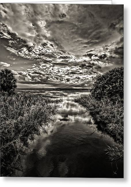 Ocularperceptions Greeting Cards -  20130919_dsc01983-2 Greeting Card by Christopher Holmes