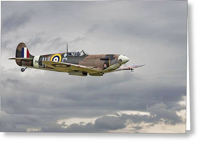 Spitfire Greeting Cards -  317 Sqdn Spitfire Greeting Card by Pat Speirs