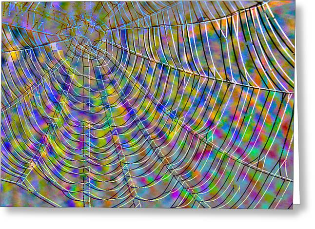 Generative Abstract Photographs Greeting Cards -  A Web of intrigue Abstract Greeting Card by Dave Byrne