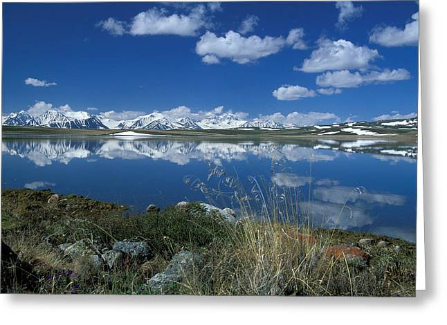 Wide Open Greeting Cards -  Altai Greeting Card by Anonymous