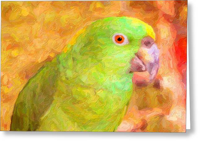 Amazon Parrot Greeting Cards -  Amazon Parrot Greeting Card by Gravityx Designs
