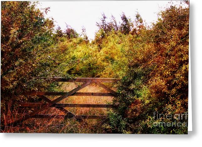 Northamptonshire Greeting Cards -  Autumn in Northamptonshire. Greeting Card by ShabbyChic fine art Photography