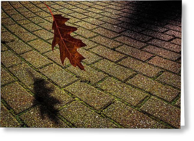 Autumnal Equinox Greeting Card by Bob Orsillo