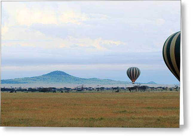 Three Hot Air Balloons Greeting Cards -  Balloons over Serengeti Greeting Card by Tony Murtagh