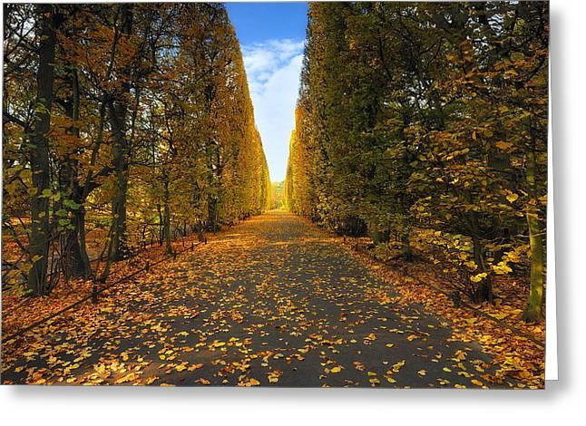 Peaceful Scene Greeting Cards -  Beautiful Colorful Autumn Greeting Card by Jan Sieminski