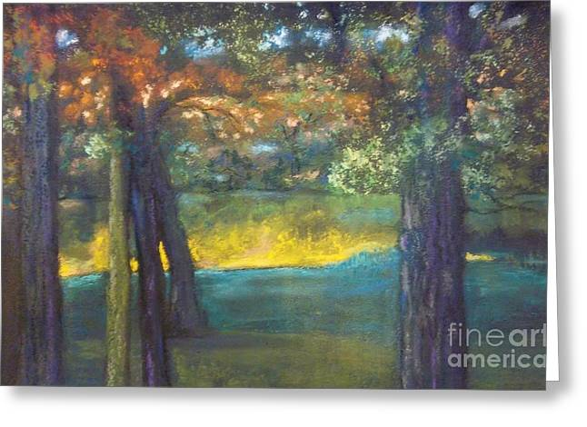 Blazing Autumn Light Greeting Card by Sandra McClure